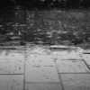 water-rain-wet-drops-69927
