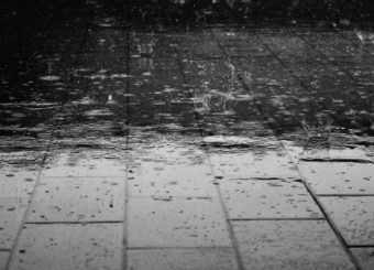 water-rain-wet-drops-69927